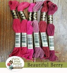 Beautiful Berry Floss Pack