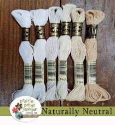 Naturally Neutral Floss Pack