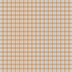 Autumn Day Plaid Tan