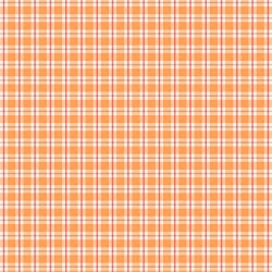 Autumn Day Plaid Orange