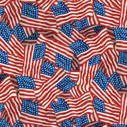 Liberty Lane Flags Multi