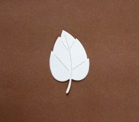 BEECH LEAF WHITE CARD 15 PK