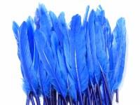 FEATHERS 11CM-14CM BLUE