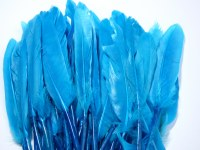 FEATHERS 11CM-14CM TURQUOISE