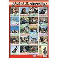 WILD ANIMALS WALL CHART