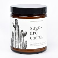 Broken Top Candle Co.Large Can - Saguano Cactus