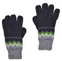 Pistil Hansel Glove - Black