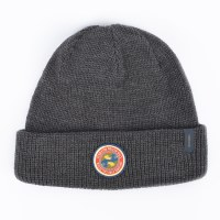 Pendleton National Park Beanie - Olympic