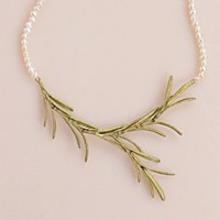 Silver Seasons Rosemary - Bronze