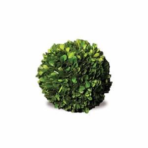 """Boxwood Sphere 6"""""""
