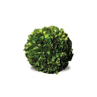 Boxwood Sphere 6""