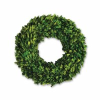 Round Boxwood Wreath 16""
