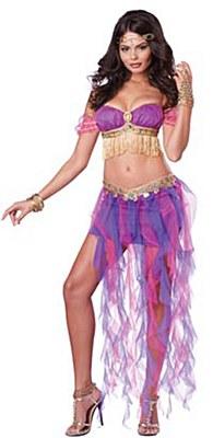 Belly Dancer Adult Costume