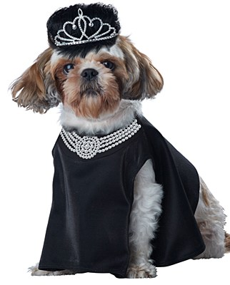 Barkfast At Sniffany's Pet Costume