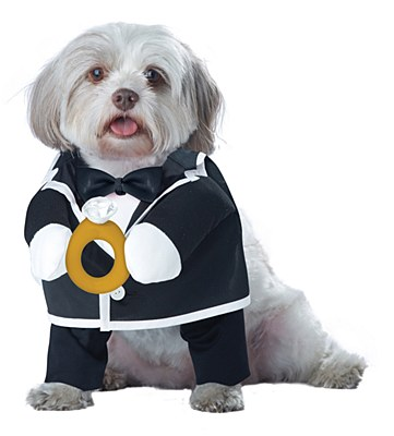 Puppy Love Groom Pet Costume