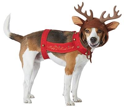 Reindeer Dog Pet Costume