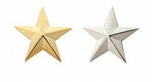 One Star General Insignia Pin Small