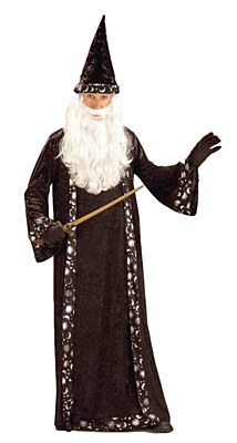 Mr. Wizard Adult Costume