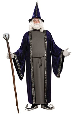 Wizard Adult Plus Costume