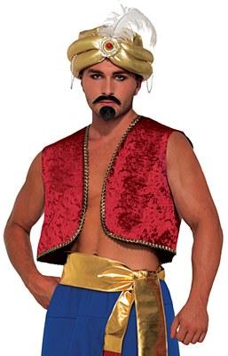 Desert Prince Genie / Aladdin Cropped Red Vest