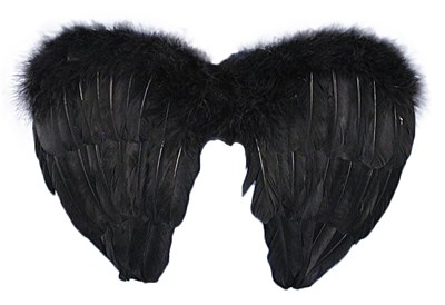 "Angel Mini 14"" Feather Wings"