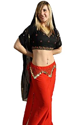 Rental Arabian Dancer Adult Costume