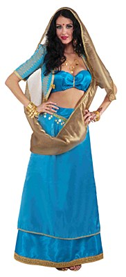 Rental Bollywood Beauty Adult Costume