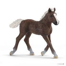 Black Forest Foal - 13899