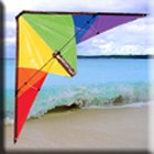 Wind Dancer Performance Kite