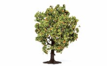 Apple Tree (with Fruit) - R7213