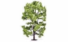 Acacia Tree - R7217
