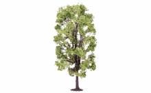 Lime Tree - R7221