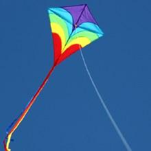 Waves Diamond Kite