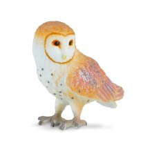 Barn Owl - 88003