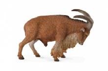 Barbary Sheep - 88683