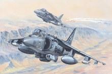 1:18 Scale AV-8B Harrier II - HB81804