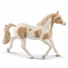 Paint Horse Mare - 13884