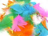 FEATHERS 14G BAG ASSORTED