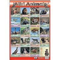 WILD ANIMALS WALL CHART