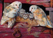 Cobble Hill 1000pc Barn Owls