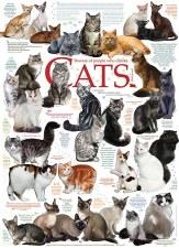 Cobble Hill 1000pc Cat Quotes