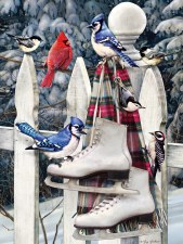 Cobble Hill 500pc Birds With Skates 85026