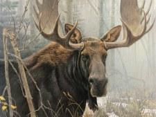 Cobble Hill 500pc Bull Moose