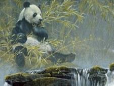 Cobble Hill 500pc Giant Panda
