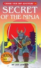 Choose Your Own Adventure #16 Secret Of The Ninja