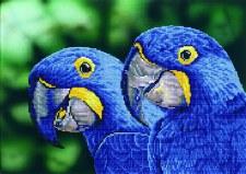 Diamond Dotz Blue Hyacinth Macaws