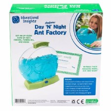 Day N Night Ant Factory