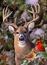 Cobble Hill 500pc One Deer Two Cardinals