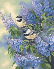 Dimensions Paint By Number Chickadees And Lilacs 11x14