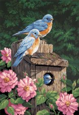 Dimensions Paint By Number Garden Bluebirds 14x20